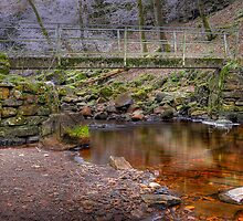 Whitfield Gill by Stephen Smith