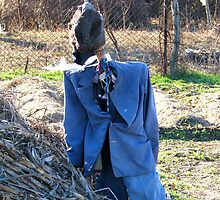 A Romanian Well Dressed Scarecrow by Dennis Melling