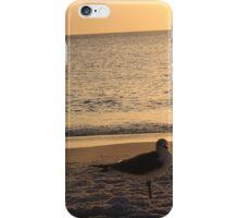 Beach Gulls iPhone Case/Skin