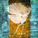 Vintage Love 2 by brandiejenkins