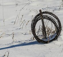 Barbed Wire Coil in Winter by Deb Fedeler