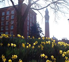 University of Birmingham - Springtime by DebbieWhite88