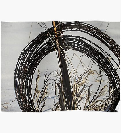 Barbed Wire, Grass, and Snow Poster
