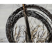 Barbed Wire, Grass, and Snow Photographic Print