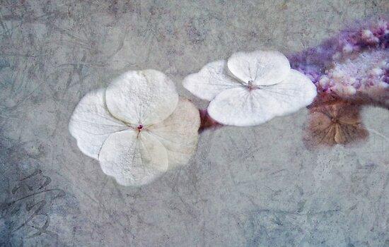 chinoise by lucyliu
