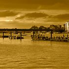 Putney Bridge by Rob Hawkins