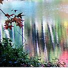 Gentle Reflections ~ Trees in the Water by Susan Werby