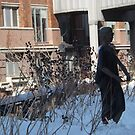 High Line, Snow View, New York City's Elevated Garden and Park by lenspiro