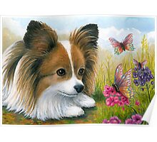 Dog 123 Papillon with Butterflies Poster