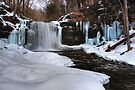 Harrison Wright Waterfall Awakens by Gene Walls