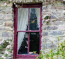 Rustic Window by Mary Carol Story