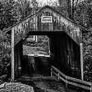Grange City Covered Bridge - BW by Mary Carol Story