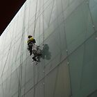 Window cleaner by jmnowak