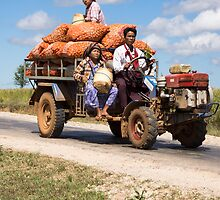 transporting onions by Anne Scantlebury
