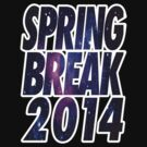 SPRING BREAK 2014 by mcdba