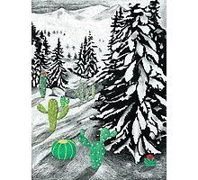 Cactus Winter Wonderland Photographic Print