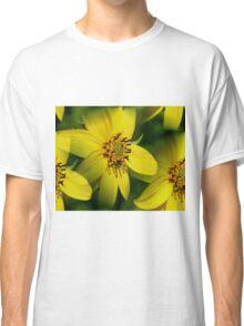 Petite Sunflowers Classic T-Shirt