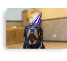 Happy Birthday from a Rottweiler Canvas Print