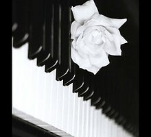 Piano by ilikefood