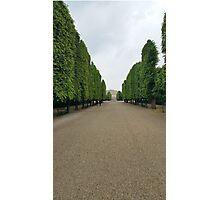 Schonbrunn Palace Gardens Photographic Print