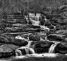 Lower East Gill Force by Stephen Smith