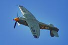 Sea Fury - Shoreham - 2013 by Colin  Williams Photography
