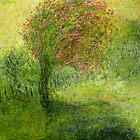 hibiscus by glennbrady