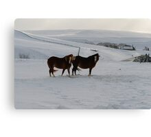 Baby Its Cold Outside Canvas Print