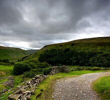 Upper Swaledale by Stephen Smith