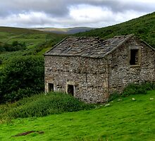 Swaledale Barn by Stephen Smith