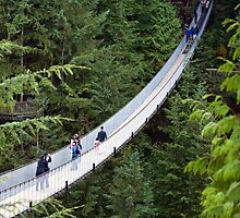 The Capilano Suspension Bridge in North Vancouver by Michael Russell
