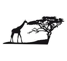 Africa tree giraffe landscape eating Savannah by Style-O-Mat