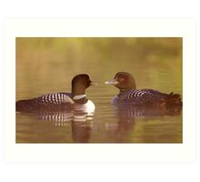 """Ahh…a-loon at last"" - Common Loon Art Print"
