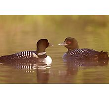 """Ahh…a-loon at last"" - Common Loon Photographic Print"