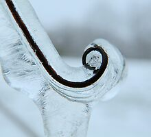 Icicle Abstract by Laurie Minor