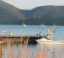 Gone Fishing - Shute Harbour,  Qld. by Margaret Stanton