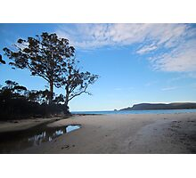 Two Tree Point Photographic Print