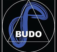 Infinite Path Martial Arts - Budo #2 • 2014 by Infinite Path  Creations