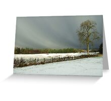 Winter scene with tree Greeting Card