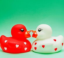 Kissing Ducks In Love by MMPhotographyUK