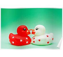 Kissing Ducks In Love Poster