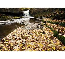 West Burton Waterfall Photographic Print