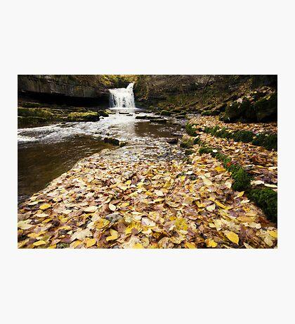 West Burton Waterfall Photographic Print