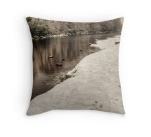The River Tees Throw Pillow