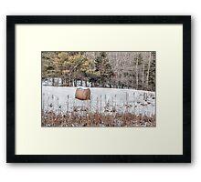 Hay Bale Can't Be Lonely Framed Print
