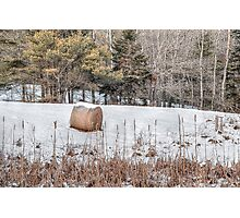 Hay Bale Can't Be Lonely Photographic Print