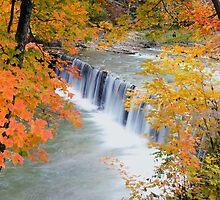Autumn Falls by stephen-brown