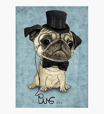 Pug; Gentle Pug (v3) Photographic Print