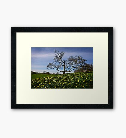 Winter and Spring Framed Print