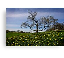 Winter and Spring Canvas Print
